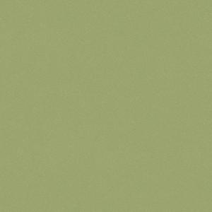 Линолеум коммерческий ACCZENT PRO Aspect-9 3,0м Tarkett