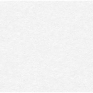Обои виниловые на флизелиновой основе Erismann Elegance 10*1,06м 4538-5
