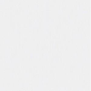Обои виниловые на флизелиновой основе Erismann Emily 10*1,06м 4519-4